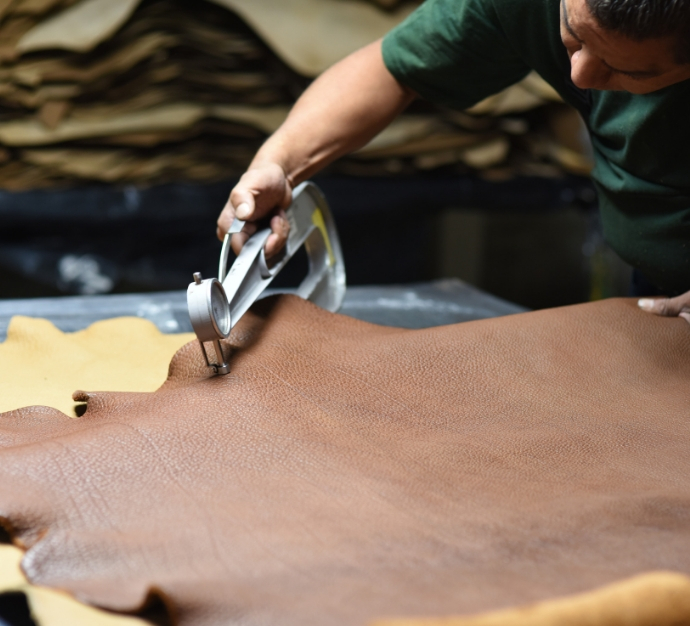 Close shot of a factory worker measuring the thickness of a dark leather hide using a metal tool