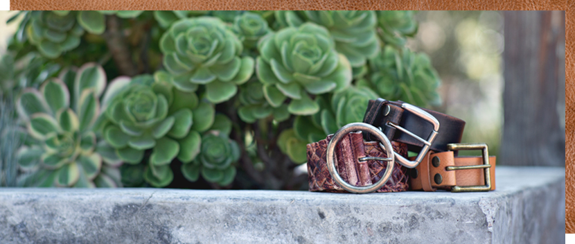 3 rolled up leather belts sitting on a stone surface with green succulents in the background